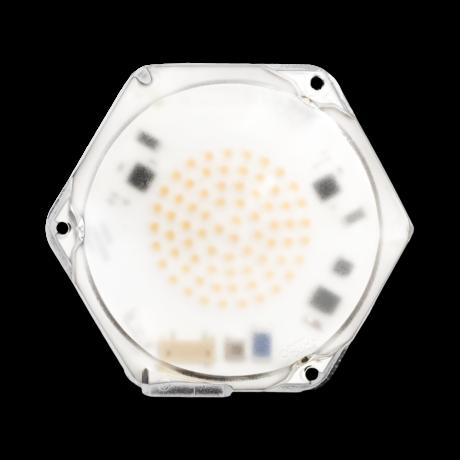 SVEA Hexagonal LED module